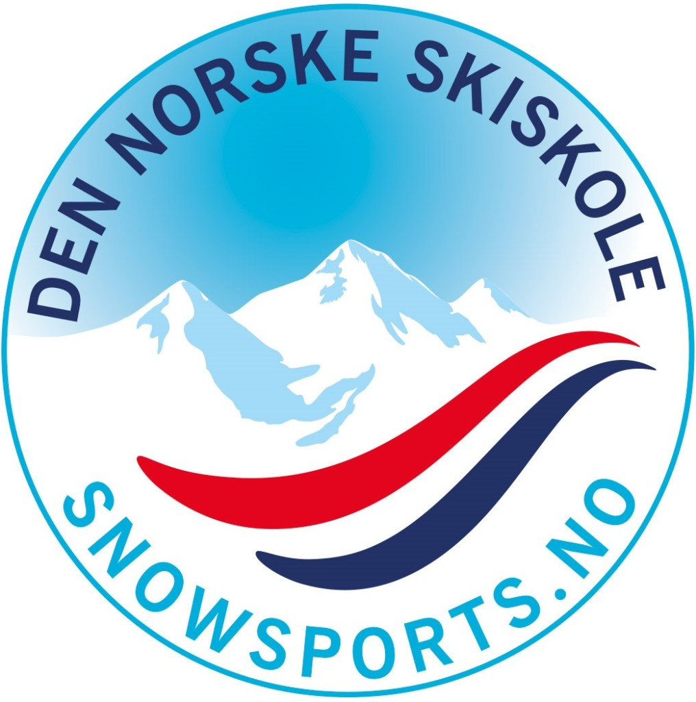 DNS-logo_tynn-strek-1 (2)